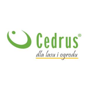 Cedrus